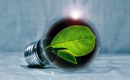 The Different Types of Energy Efficient Light Bulbs